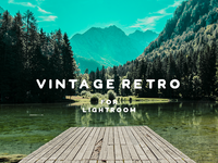 Vintage Retro Lightroom Presets