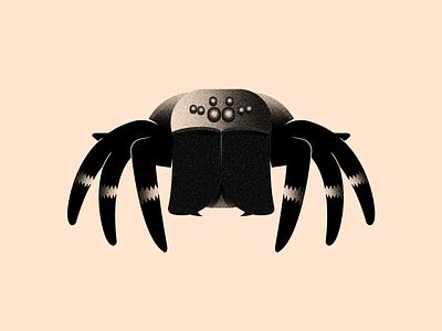 Vectober 31 - Crawl inktober2020 crawl eyes shadows vectober inktober texture black color white illustration flat 2d illustrator tarantula spider
