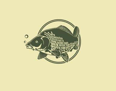 carp graphic design vintage vector illustrator vector illustration vector retro logo illustration icon graphicdesign graphic fishing fish carp