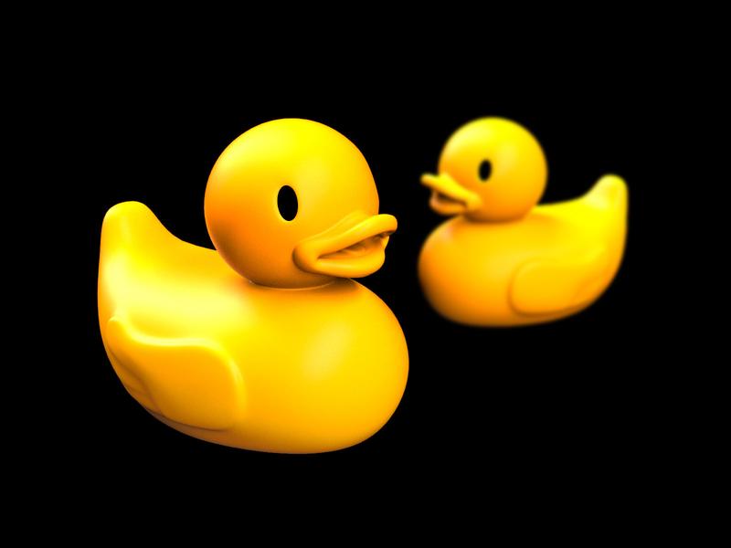 What the Ducks 3d art 3d