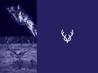Owl + Deer Logo