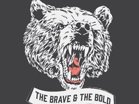 The Brave & The Bold