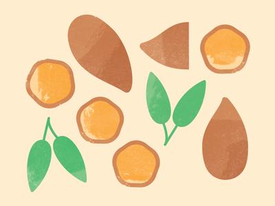 Sweet Potato & Sage Illustrations texture sage sweet potato