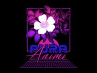 Aura Animi