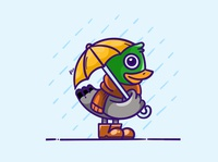 A duck in the rain