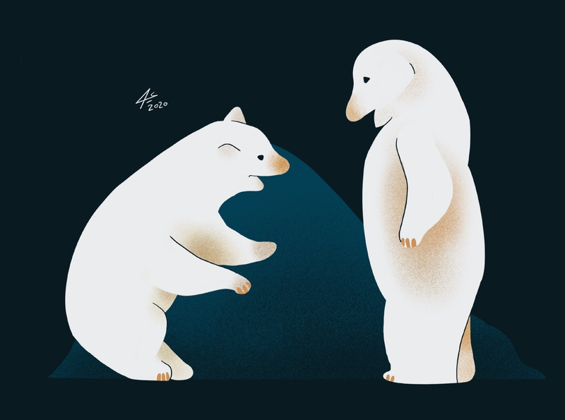 Polar bears ux illustrator toon digitalart draw art sketchbook procreate illustration drawing bear bears
