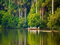 download Amazonia for mac, download Amazonia for pc