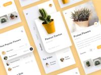 Plant shop - app concept