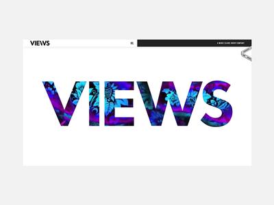 Views Agency Website website