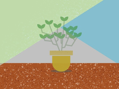 Plant Texture 2