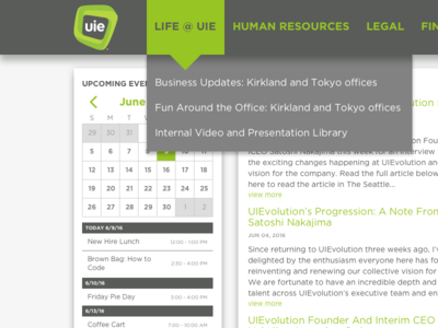 UIE Intranet Design