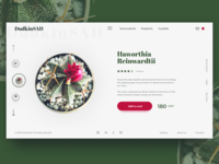 DudkinSAD Online Store Homepage Concept