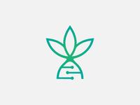 Lotus Biotechnology Logo