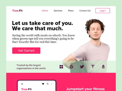 True.Fit ux designer ui design landing page design website design