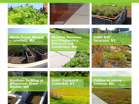 Recover Green Roof's Portfolio Selection