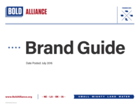 Bold Alliance Brand Guide