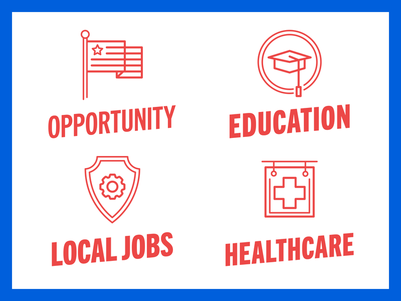 Issue Icons linework icons healthcare jobs education america candidate politics campaign brand