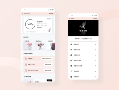 E-commerce VIP UI