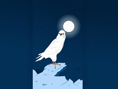 Deep night pencil illustrations darkness design character bird night moon light adobe illustrator illustration affinity designer vector