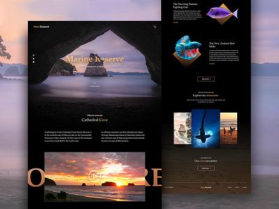 Marine Reserve - Travel Landing Page travel website tourism website dark webdesign minimal flat business clean design ui beach fish marine tourism travel