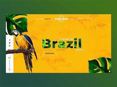 Brazil Landing Page Concept ux logo illustration icon branding vector typography ui dark web flat simple minimal clean webdevelopment webdesigner webdesign graphicdesign design business