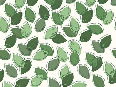 Eucalyptus graphic design illustration plant eucalyptus nature