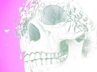 Skull fragmentation