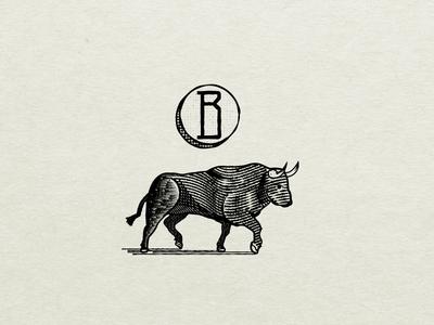 B is for Bull