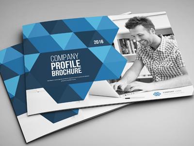 Company Profile Brochure corporate business brochure business brochure blue annual report annual