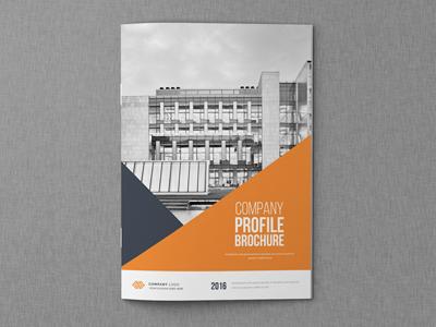Annual Report Brochure corporate business brochure business brochure blue annual report annual