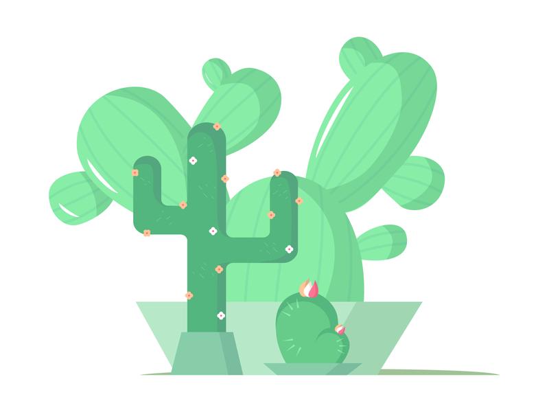 Cacti cactus decore nature green adobe illustrator cacti vector illustration