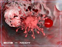 2019 - nCov
