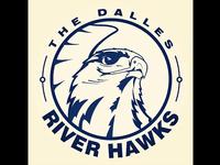 Hawks logo design WIP