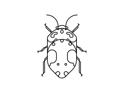 Coleoptera Beetles icon oksal yesilok vector poster design poster illustration design beetle