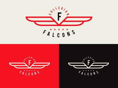 Falcons 18' Reject Design
