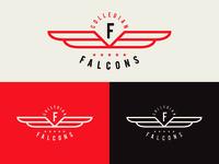 Falcons 18' Reject Design