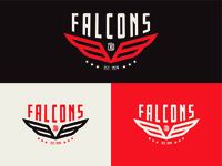 Falcons 18' Design
