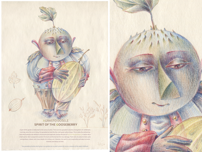 SPIRITS OF THE GARDEN. Spirit of the Gooseberry pencil drawing pencil color pencils watercolor pencils visual art visual story idea picture art fine arts character character design nature graphic hand drawing drawing illustration