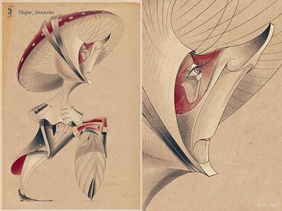 PROUD FUNGI_MAJOR AMANITA design digital character design nature hand drawing graphic drawing illustration
