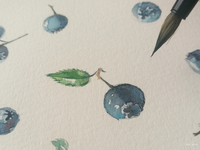 When we do not rush — we start to see blueberries