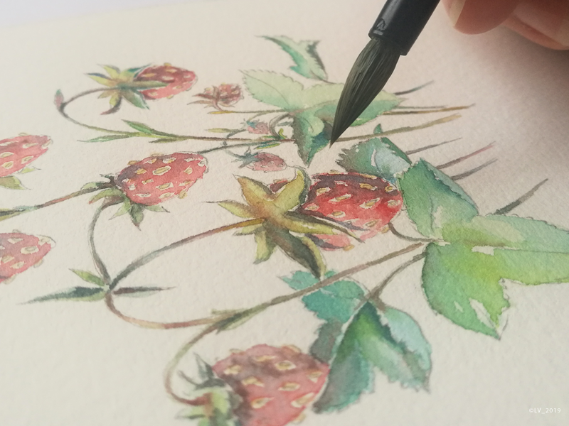 When we do not rush — we start to see strawberries brush handmade strawberries water color nature illustration nature graphic hand drawing drawing illustration