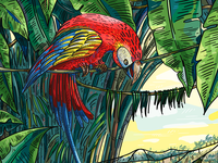 Illustration for Veggo brand