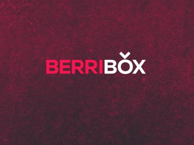 Berribox: The logo berribox logo pink texture purple nexa product