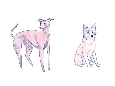 Dogs pt. 1 sketch animals drawing illustration