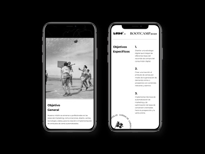 Website - LUDOx Bootcamp webdesign website tribe lead vintage old painting marketing flag freedome delacrox branding ux uiux figmadesign adobexd ui