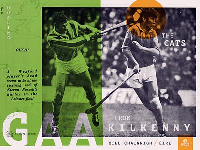 Kilkenny Cats triskele kilkenny ireland gaa hurling collage