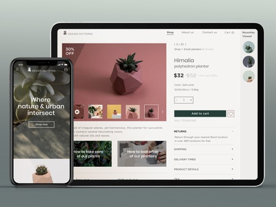 E-commerce design webdesign website responsive design responsive natural colorful product design succulents plants online store online shop shop ecommerce ux mobile ui design app