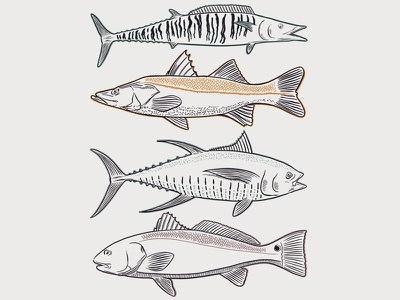 Trophy Catch tee t-shirt outdoors fishing fish redfish tuna snook wahoo