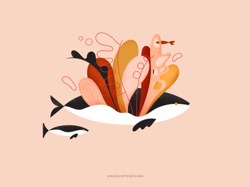 Flower Pod colorful pod orca design flat  design texture graphic flat nautical seaweed bloom flower animal whale fish vector illustration