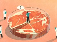 让你吃人造肉的3个人,和地球的新未来